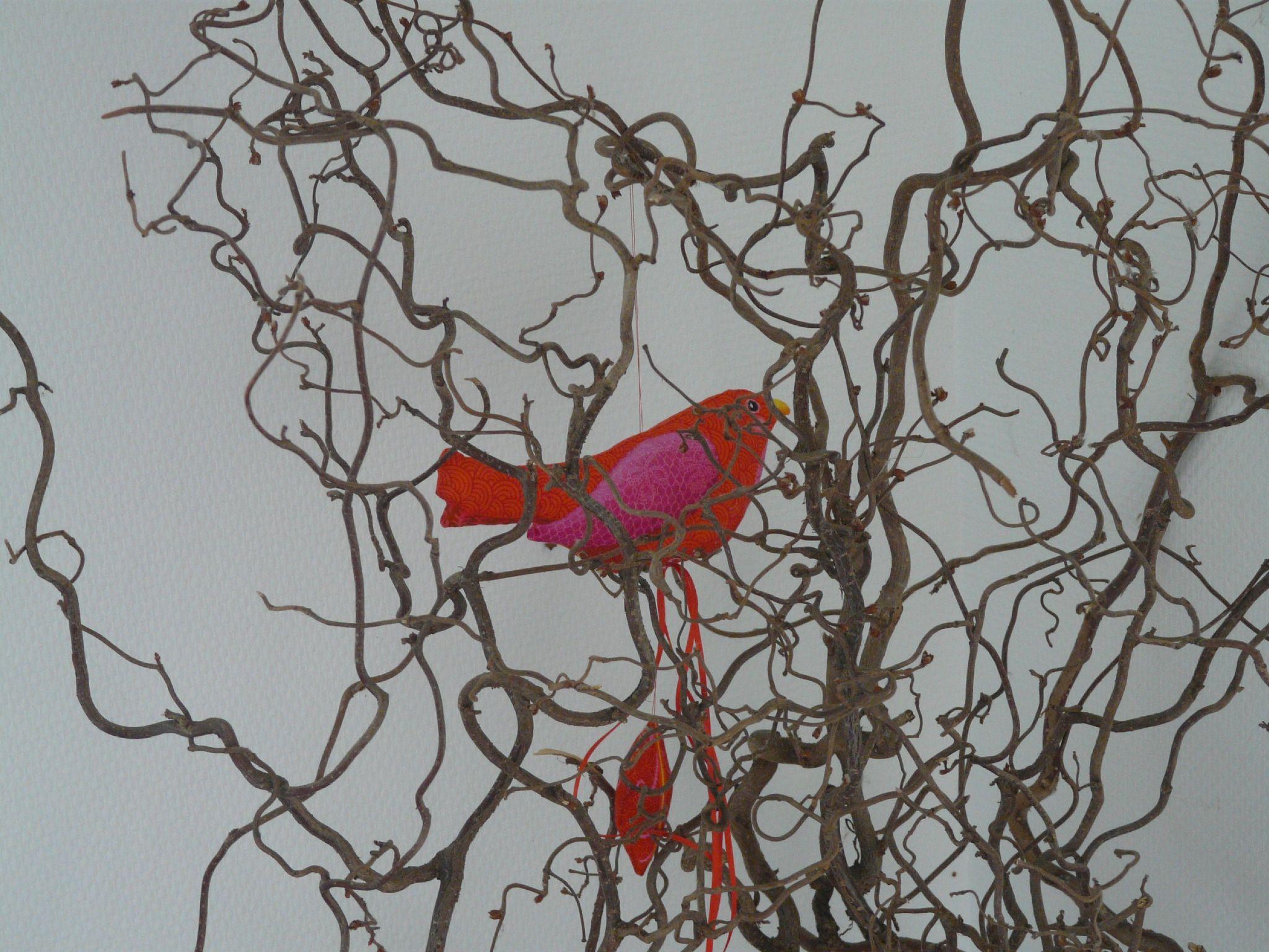 oiseau rouge d'Odile Bailloeul