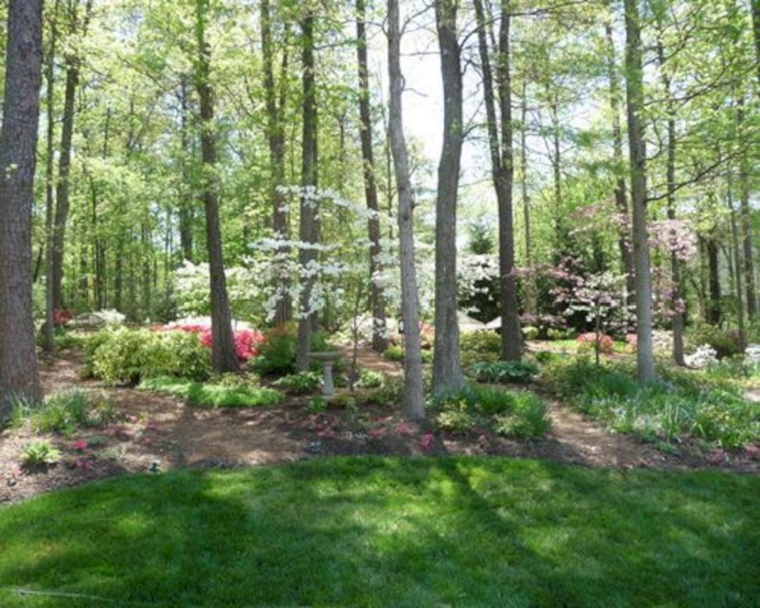 Try To Awesome Your Backyard With Our 25 Woodland Garden Ideas Freshouz Com Wooded Backyard Landscape Wooded Landscaping Woodland Garden