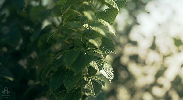 Leaves by Dabarti. Rendered on GPU.
