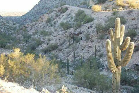 South Mountain Phoenix
