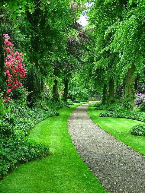 Faruk Tin On Twitter Beautiful Gardens Garden Paths Privacy Landscaping