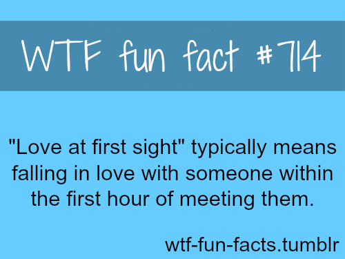 Facts about love at first sight