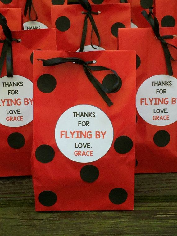 Personalized Ladybug Birthday Party Favor Bags By LittleMichaels