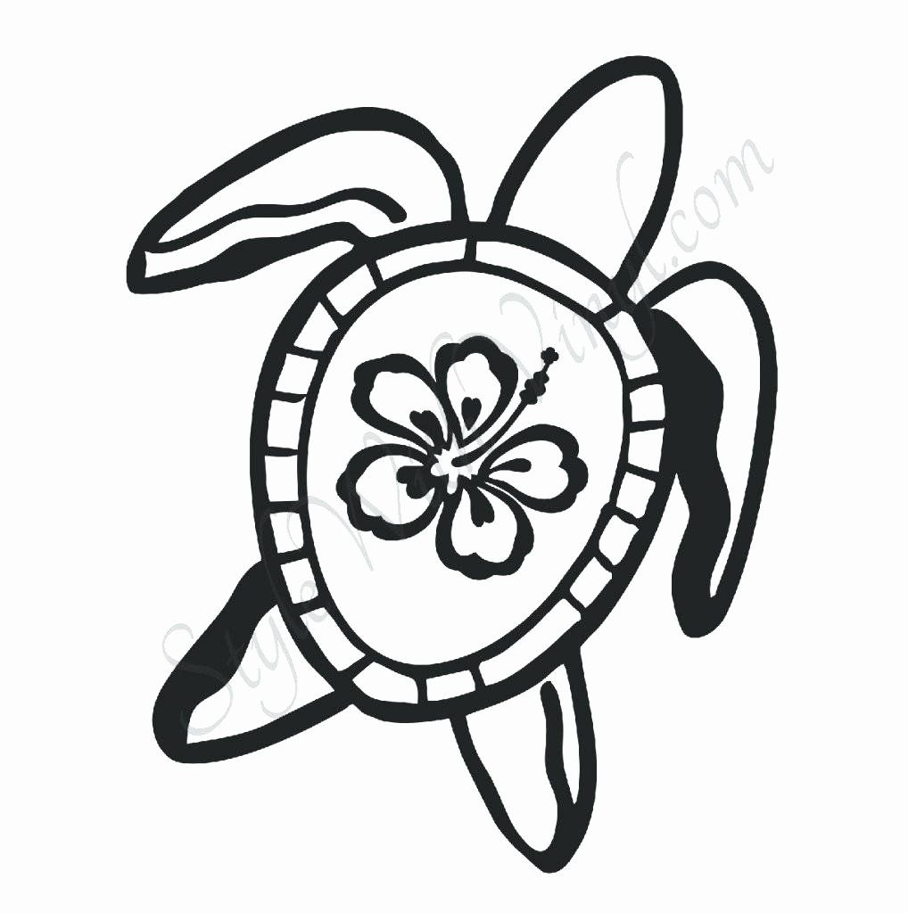 Hawaii State Flower Coloring Page Hawaiian Flower Drawing