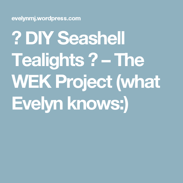 ♥ DIY Seashell Tealights ♥ – The WEK Project (what Evelyn knows:)
