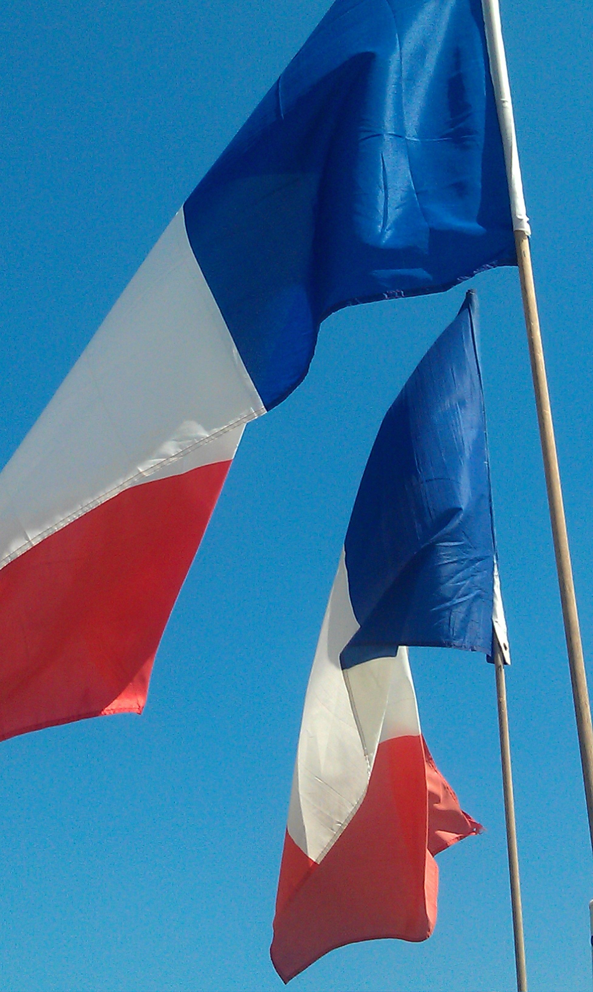 flags french