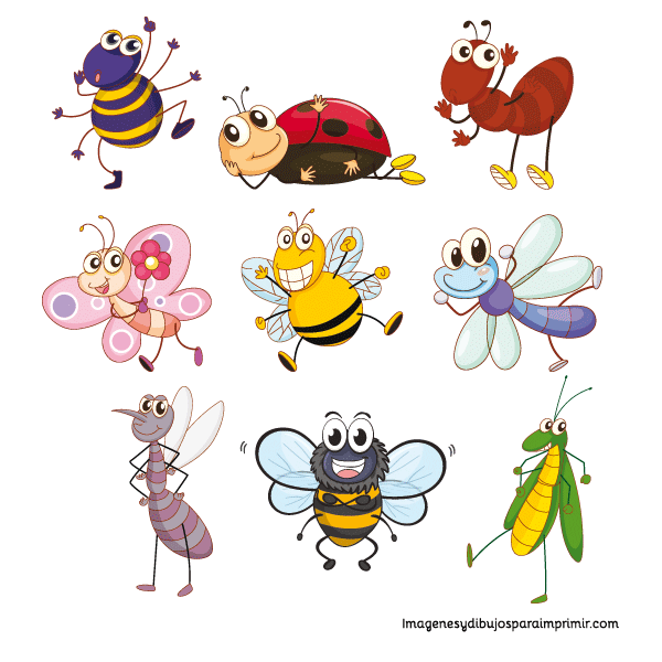 Imprimir insectos | DIBUJOS INFANTILES | Pinterest | Insectos ...