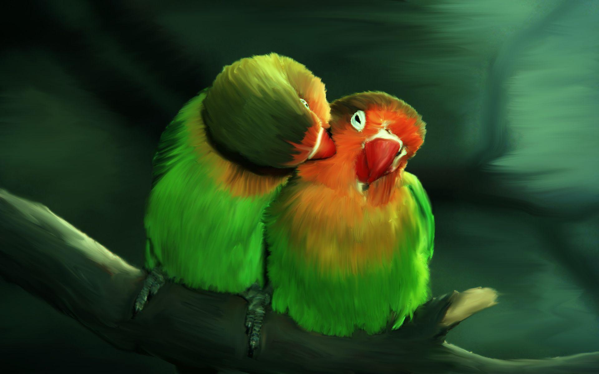 Love Birds By Love Hinaa Bird Wallpaper Parrots Art Beautiful Birds