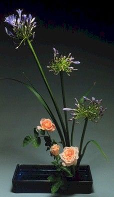 RP: Ikebana: Lilies of the Nile and Peach Roses  save-on-crafts.com