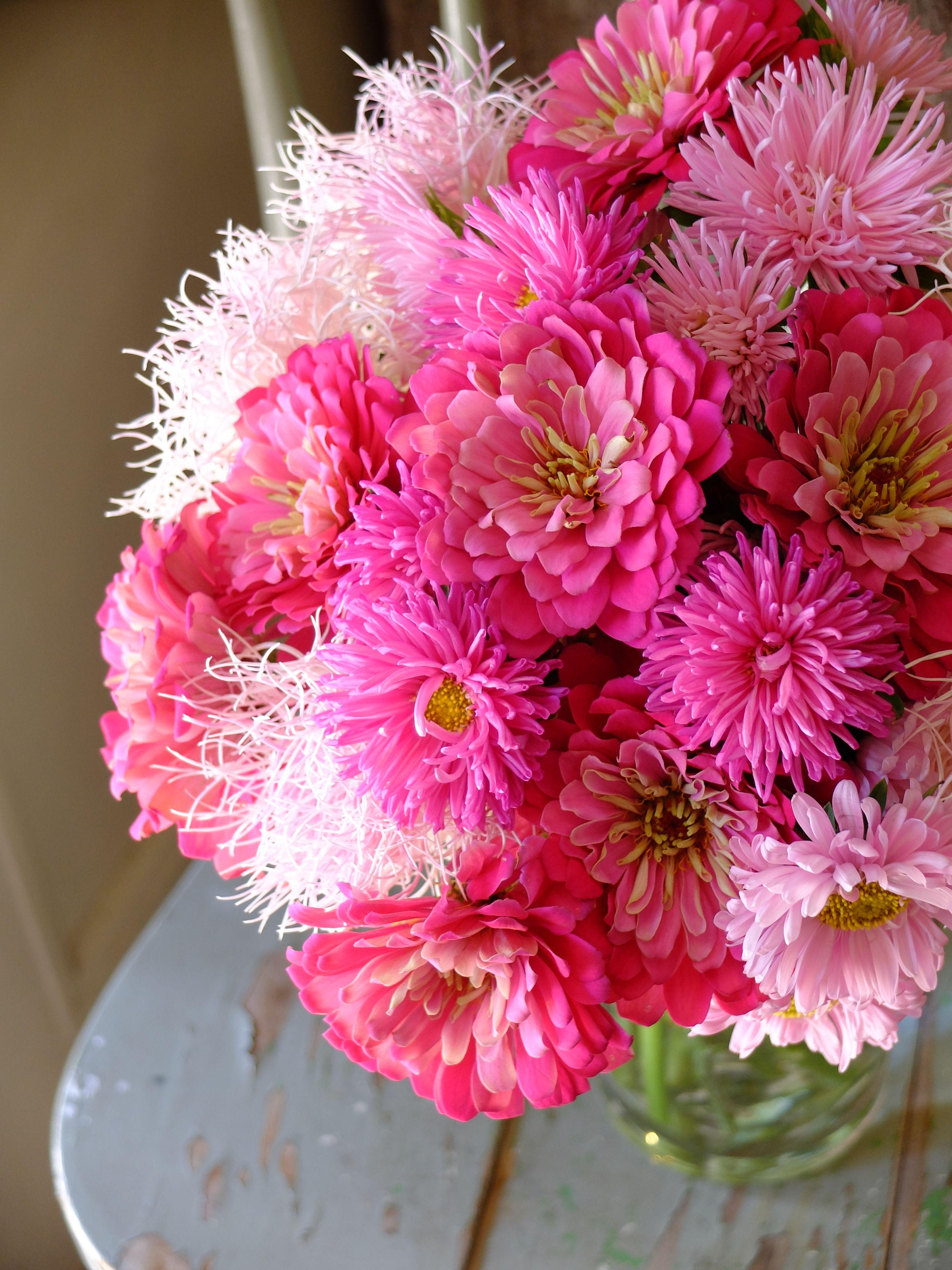 Zinnia China Aster And Mum Flower Arrangements Everyday Bouquet Pink Flowers