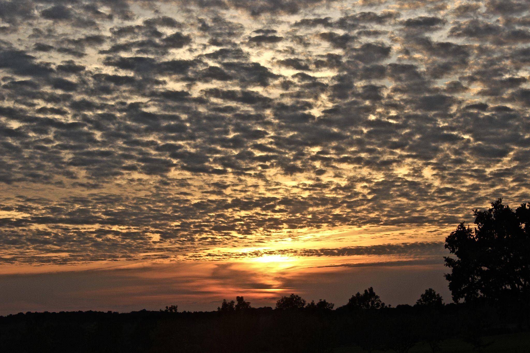 On Sunset Patio! Astrofarm, Confolens, France