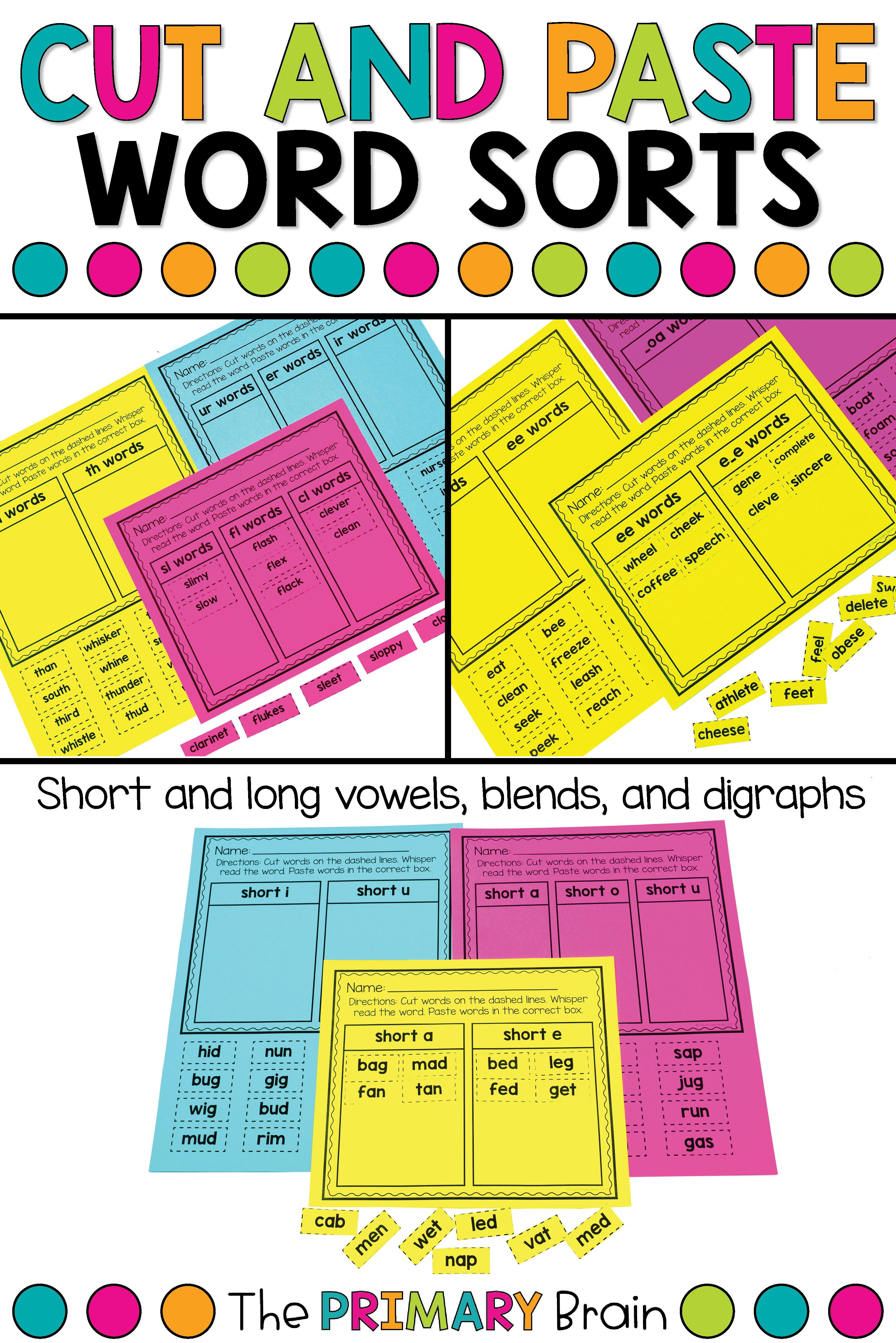 Pin On The Primary Brain Tpt Resources