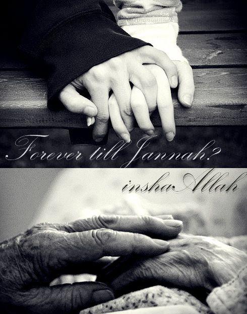 Image result for love till jannah