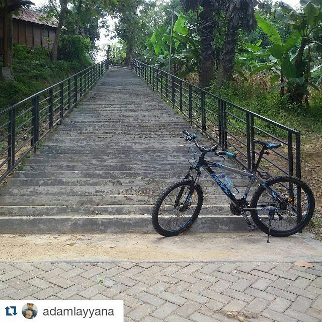 "pacific bikes Indonesia on Instagram ""Repost"