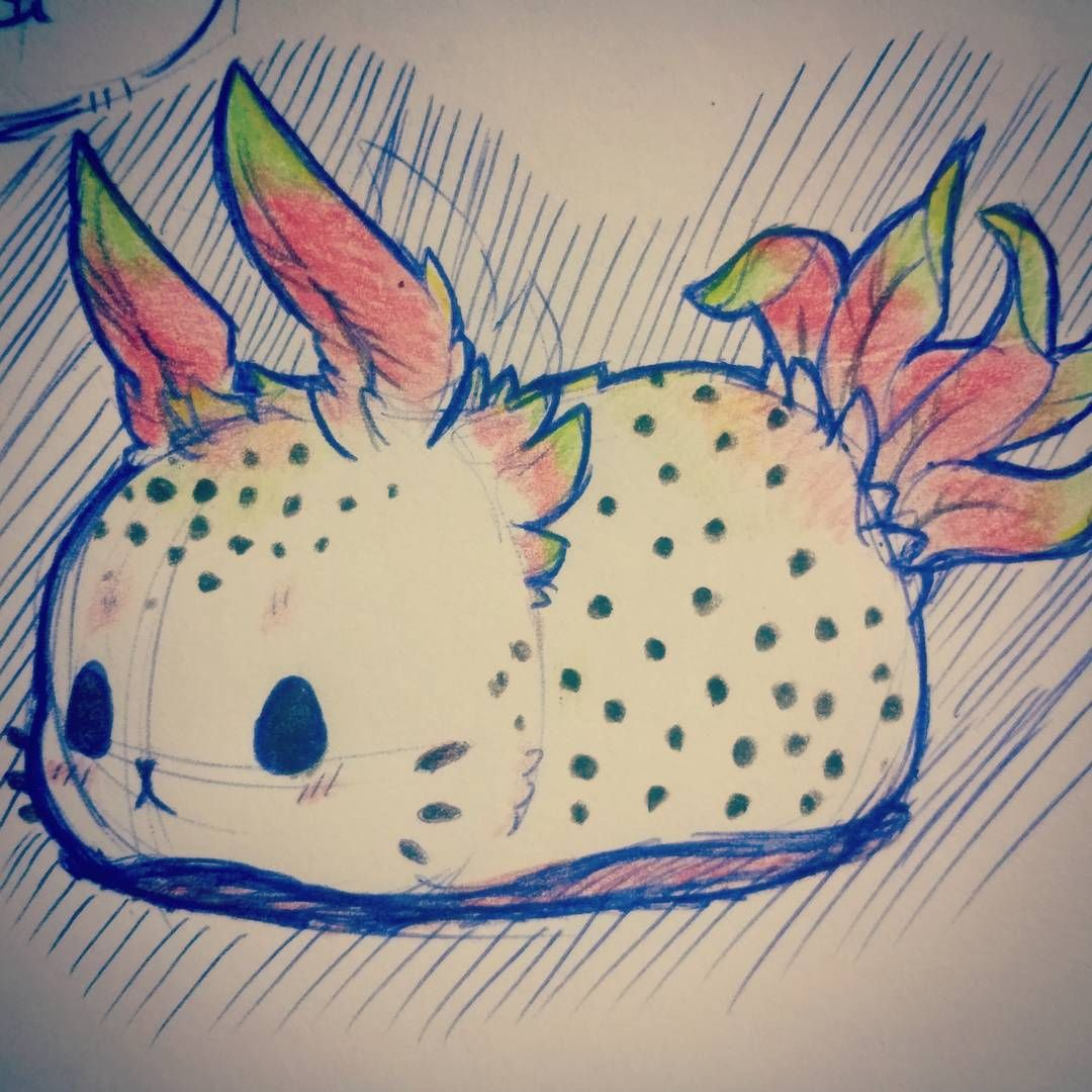 Dragon Fruit Sea Bunny Inspired By My New Fruitimals Plush And