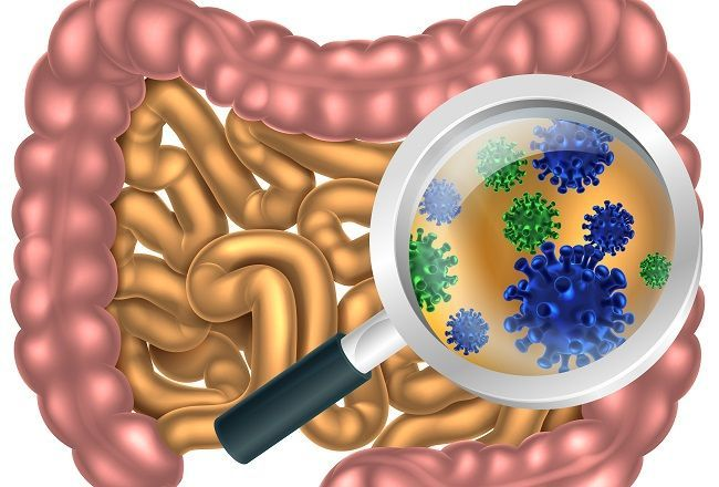 7 príznakov premnoženia škodlivých baktérií v čreve