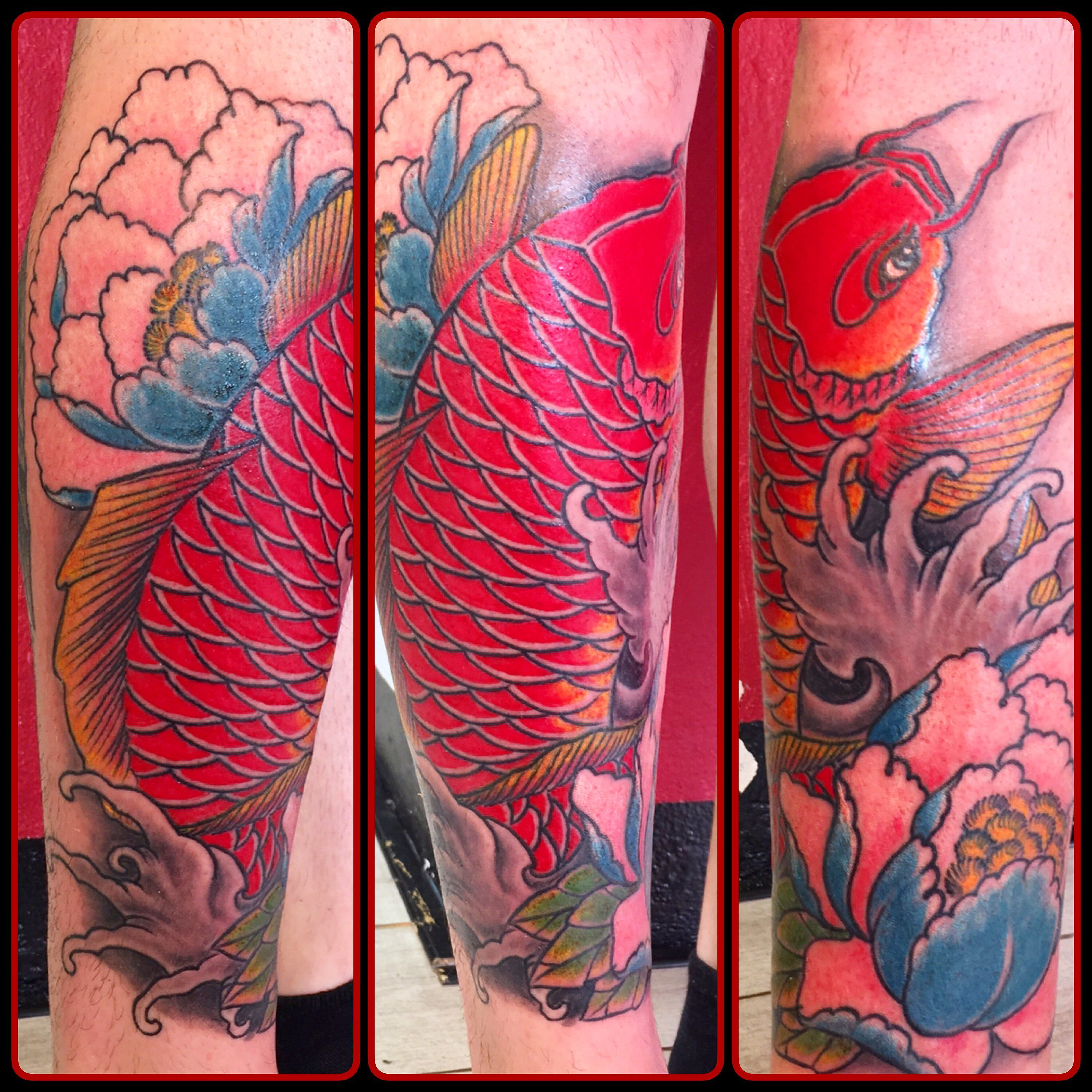 Modern Color Koi Fish Collection Pink Coloring Sheet