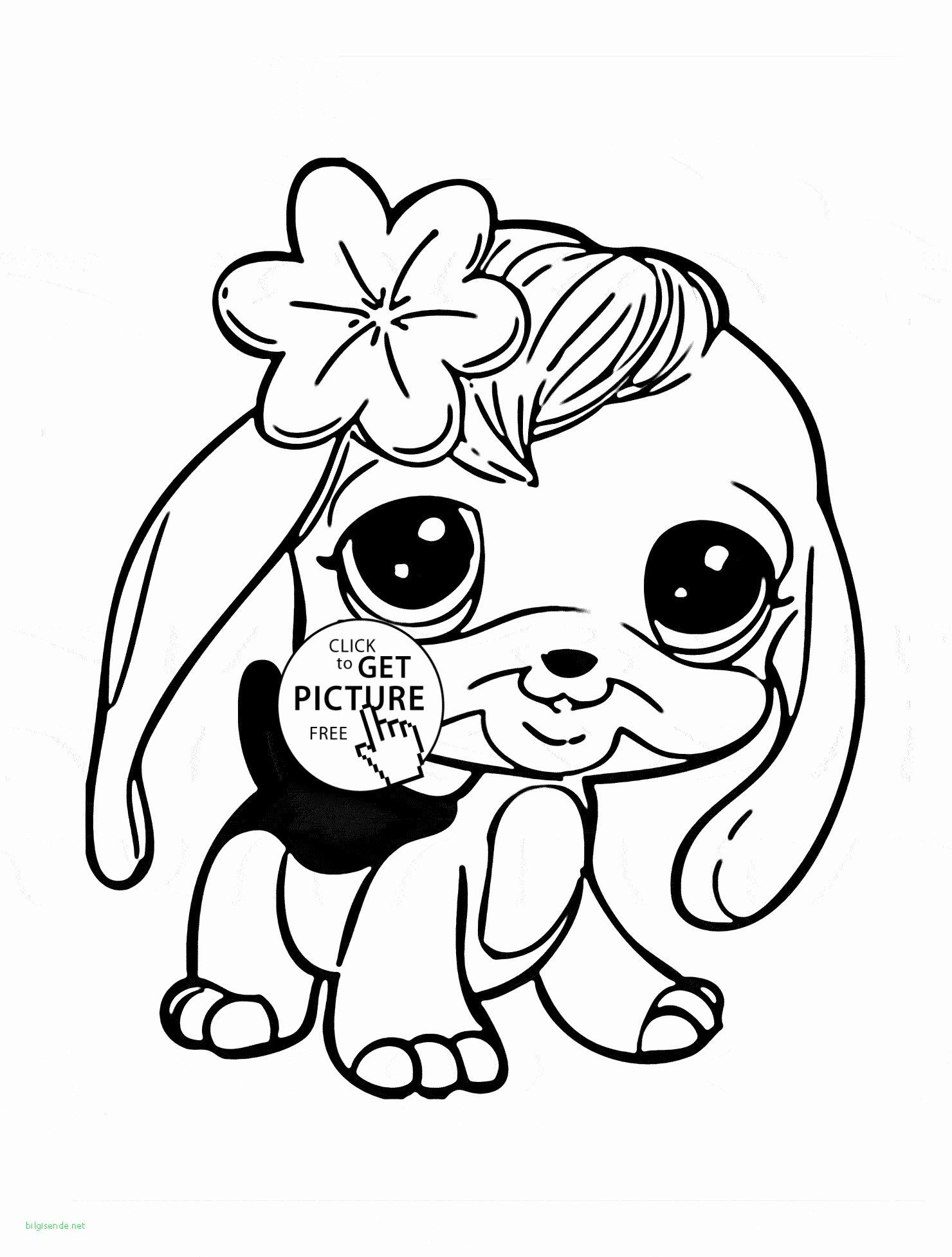 Animal Jam Coloring Pages Arctic Wolf Lovely Coloring Book Printable Coloring Pages Kids Snow Fo Animal Coloring Books Zoo Coloring Pages Animal Coloring Pages