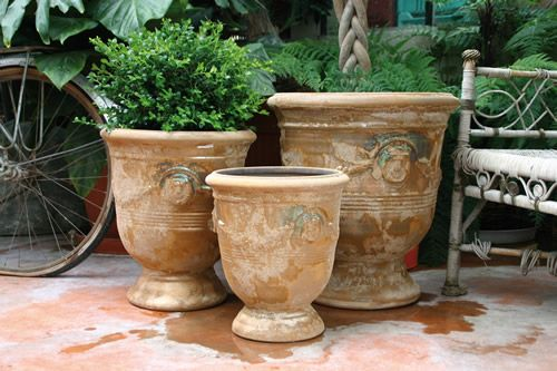 poterie d 39 albi french pottery for a formal garden topiary jardins poterie et topiaire. Black Bedroom Furniture Sets. Home Design Ideas