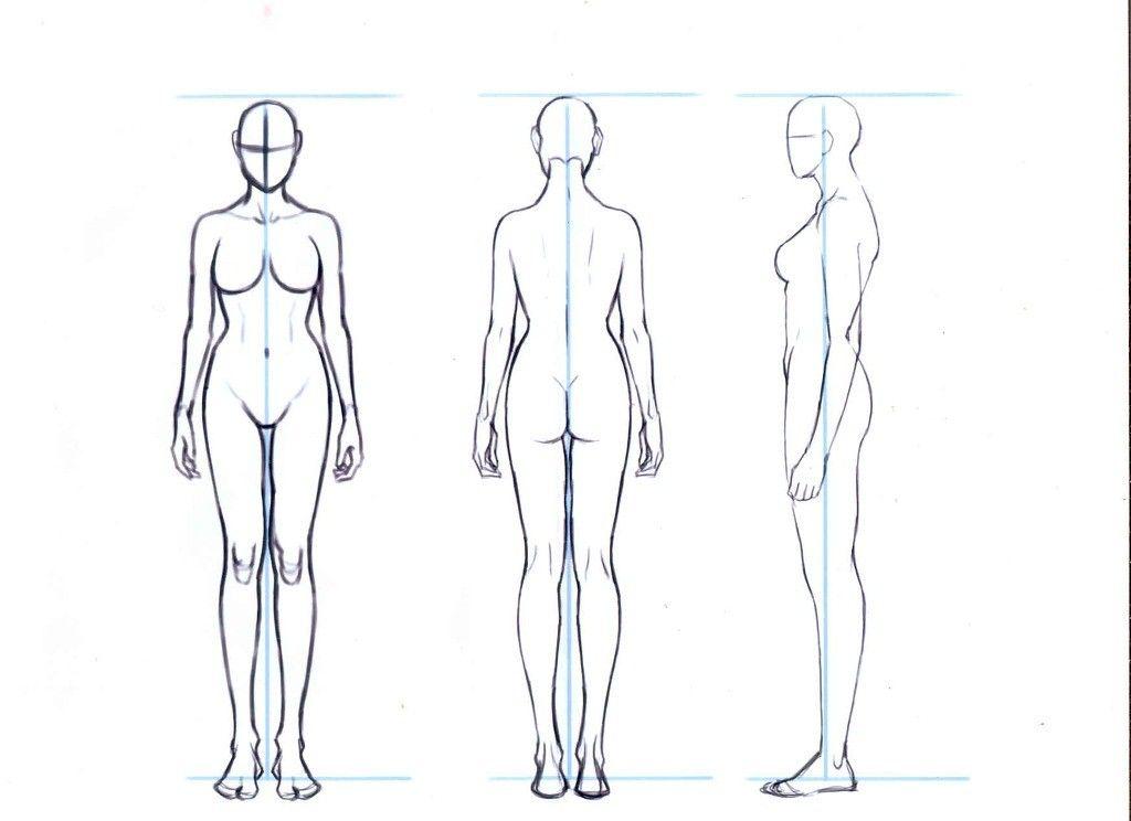 인체비례 - Google 검색 | 인체비례 연령별 | Pinterest