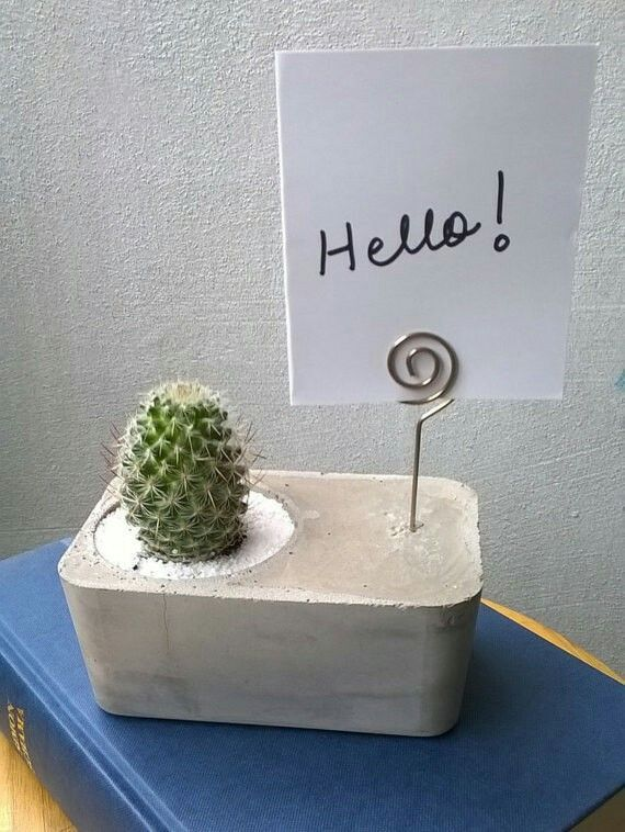 Photo of DIY photo holder made of concrete with integrated flower pot.