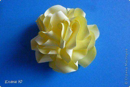 Розы из бумаги на скорую руку / Слабый пол!