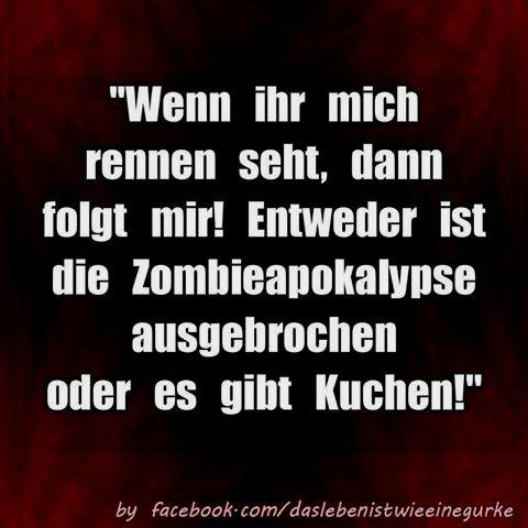 sprüche #lmao #schwarzerhumor #lustigesprüche #laugh #werkennts - lustige sprüche küche