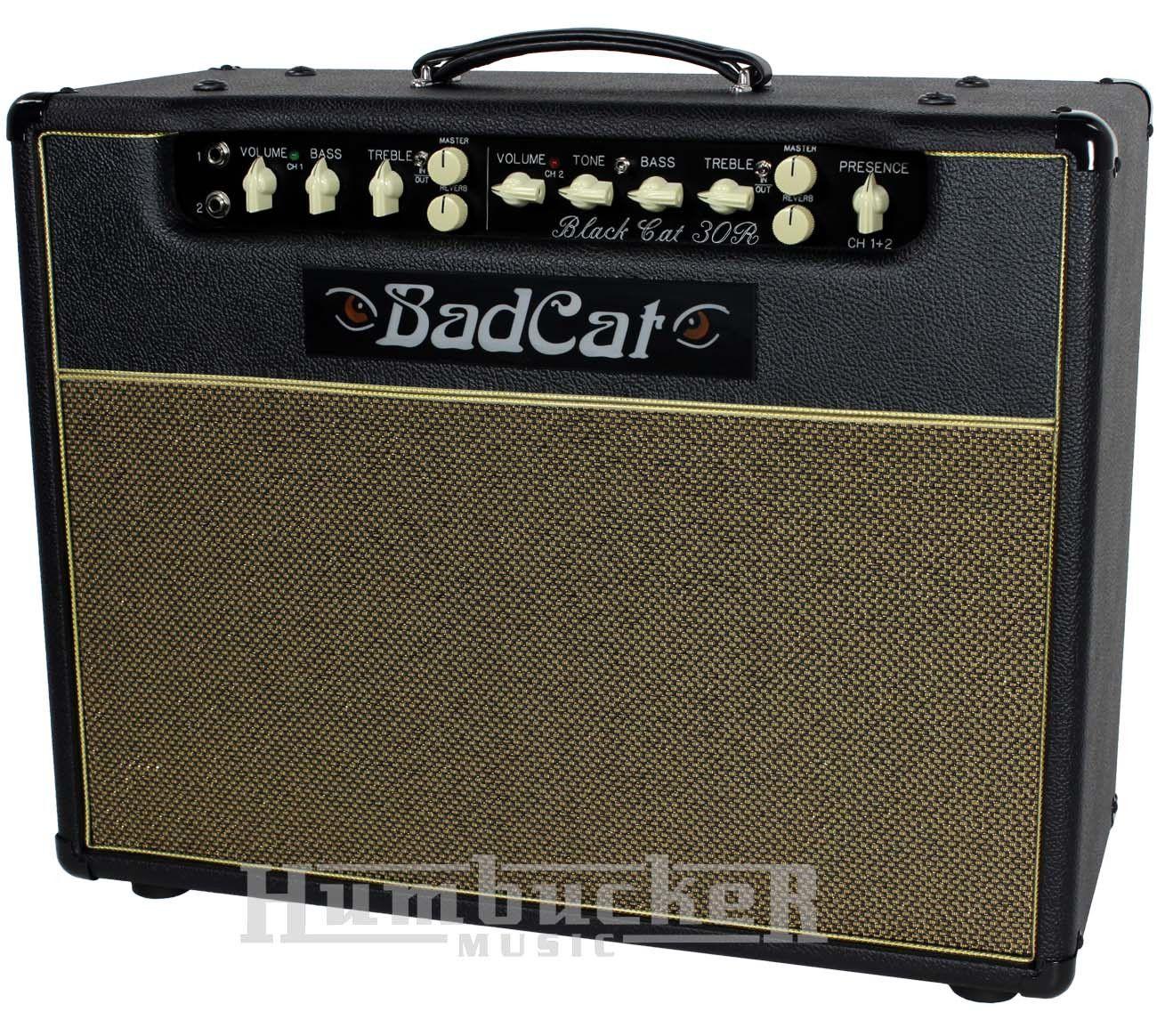 Bad Cat Black Cat 30 Reverb Combo Amp Bad cats, Bad cat