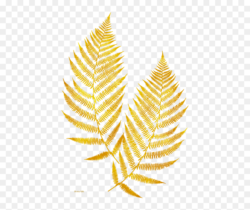 Gold Leaves Transparent Background Hd Png Download Is Pure And Creative Png Image Uploaded By Designer To Gold Design Background Gold Drawing Maple Leaf Gold