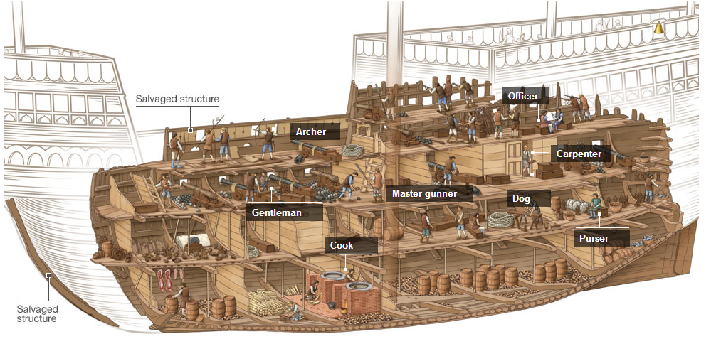 Cutaway view of the Henry VIII's Mary Rose warship.
