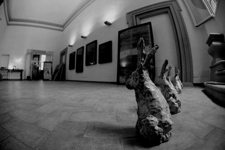 Studio 1 ~ Luca Caccioni