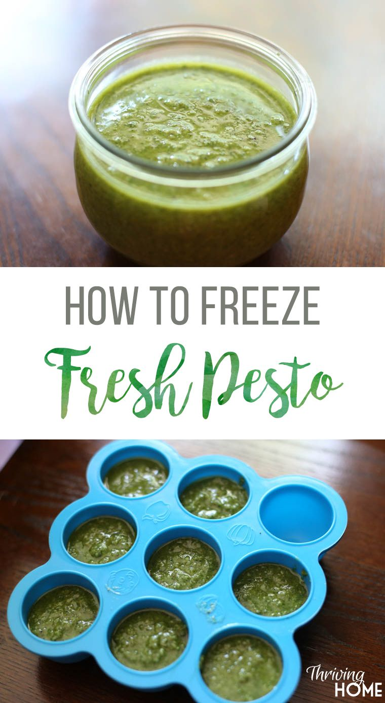 How to Make and Freeze Fresh Pesto Recipe (With images