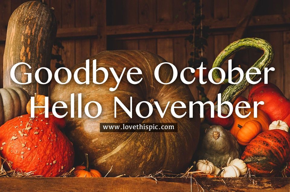 Big Pumpkin Goodbye October Hello November Quote Pumpkin November Hello November Goodbye October Goodbye October Hello Hello November November Quotes Pumpkin
