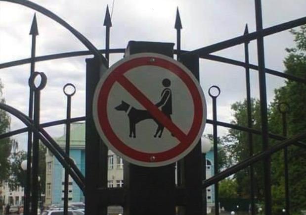 Hunde bumsen