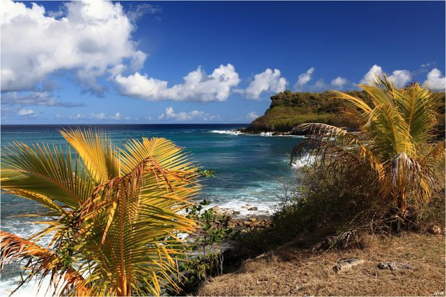 Photo : l 'anse de l'Echelle,  Mers et plages, Guadeloupe. Toutes les photos de Christian DELPHINO sur L'Internaute