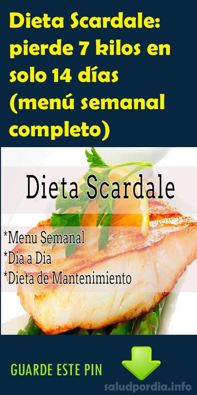 dieta 13 dias bisquete