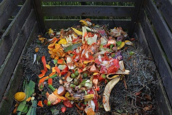 The Magic Of Compost Diy Compost Compost Food Waste
