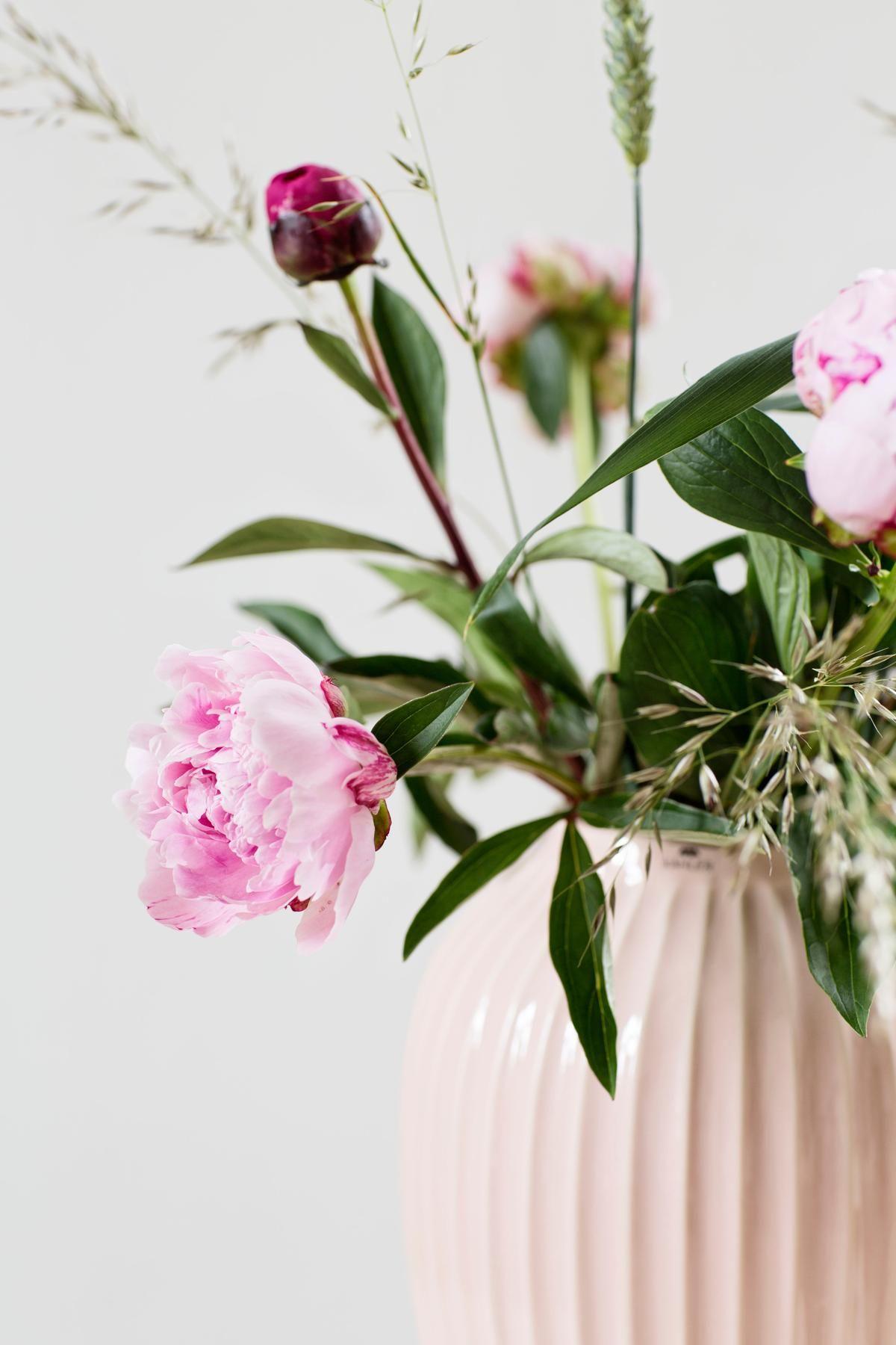 Blumentipps So Bleiben Ihre Schnittblumen Lange Sch N