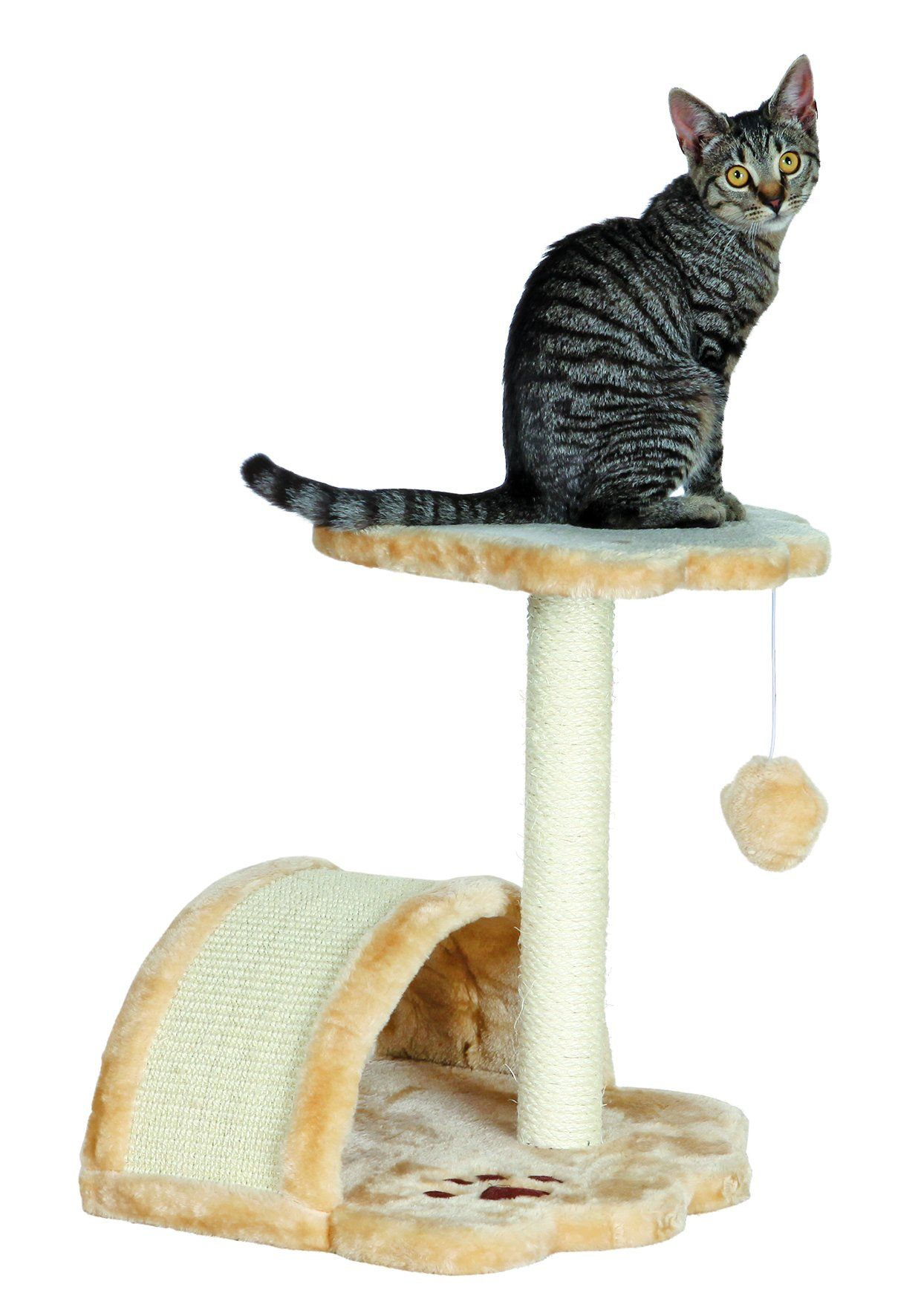 Trixie Pet Products Vitoria Kitten Scratching Post Read More At The Image Link This Is An Affiliate L Best Cat Scratching Post Cat Scratching Post Cat Bed