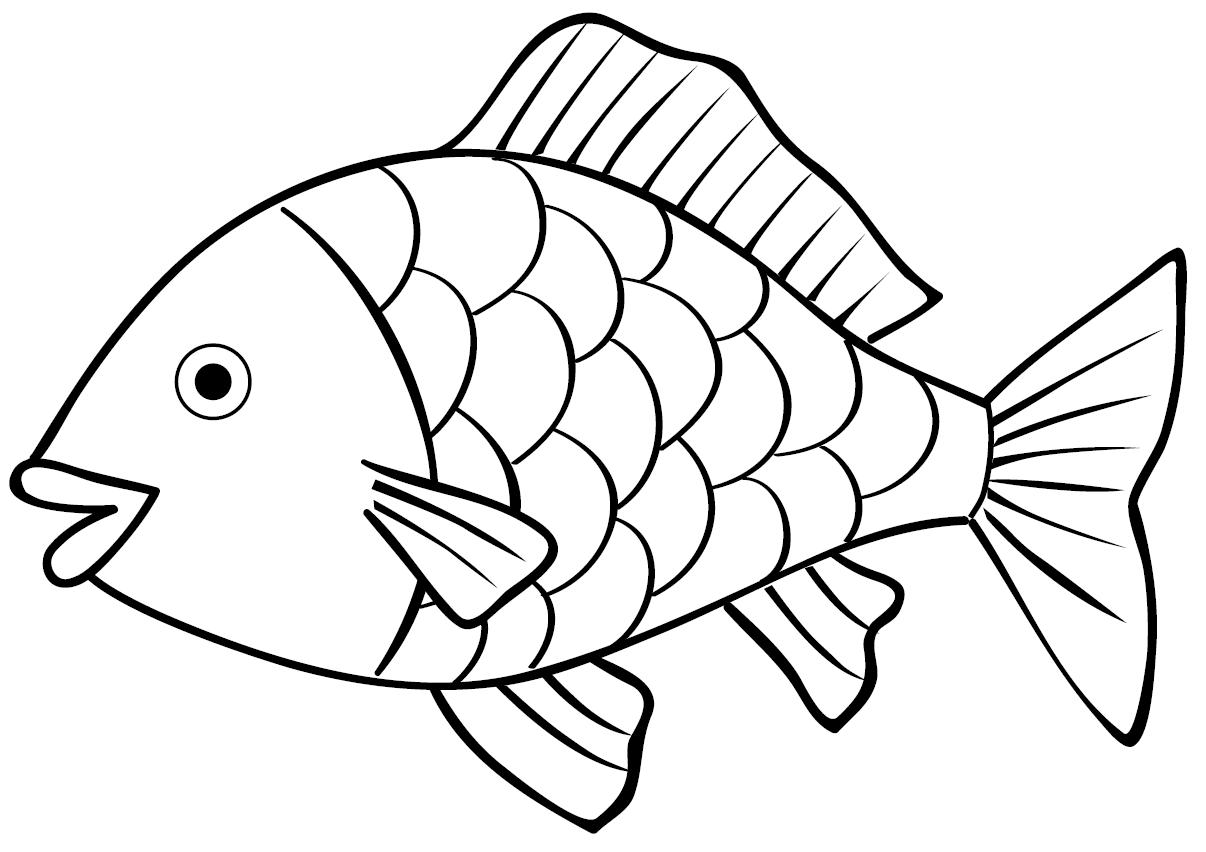 Gambar Sketsa Ikan Koi Hitam Putih Wwwtollebildcom