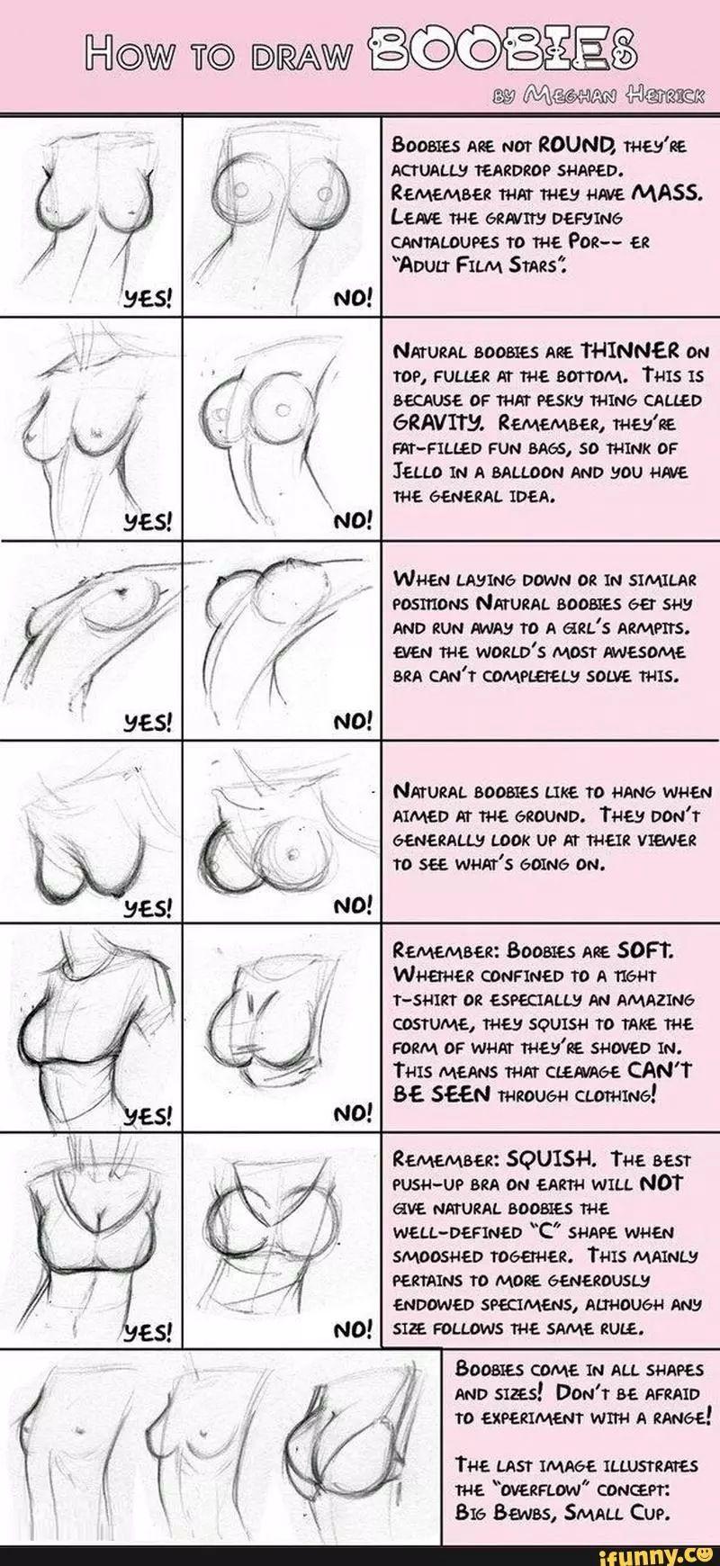 Anatomy Female body-boobs | anatomy,body part | Pinterest | Anatomía ...