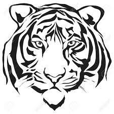 Resultado De Imagen Para Dibujo De Cara De Leon Cara De Tigre Dibujo Tigre De Bengala Dibujo Dibujo Tigre
