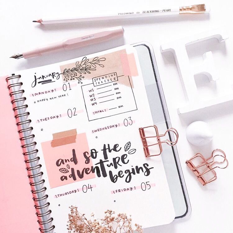 aesthetic #pink #photo #pic #photoinspo #photography #journal #journaling  #bulletjournal #l… | Bullet journal inspiration, Bullet journal aesthetic,  Bullet journal