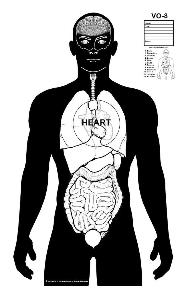 Black and white target shooting targets target and guns these fun vital organ targets are excellent for practicing your shooting skills the illustrated organs are anatomically correct for precise f ccuart Image collections