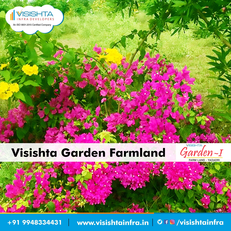 Pin on Visishta Gardens