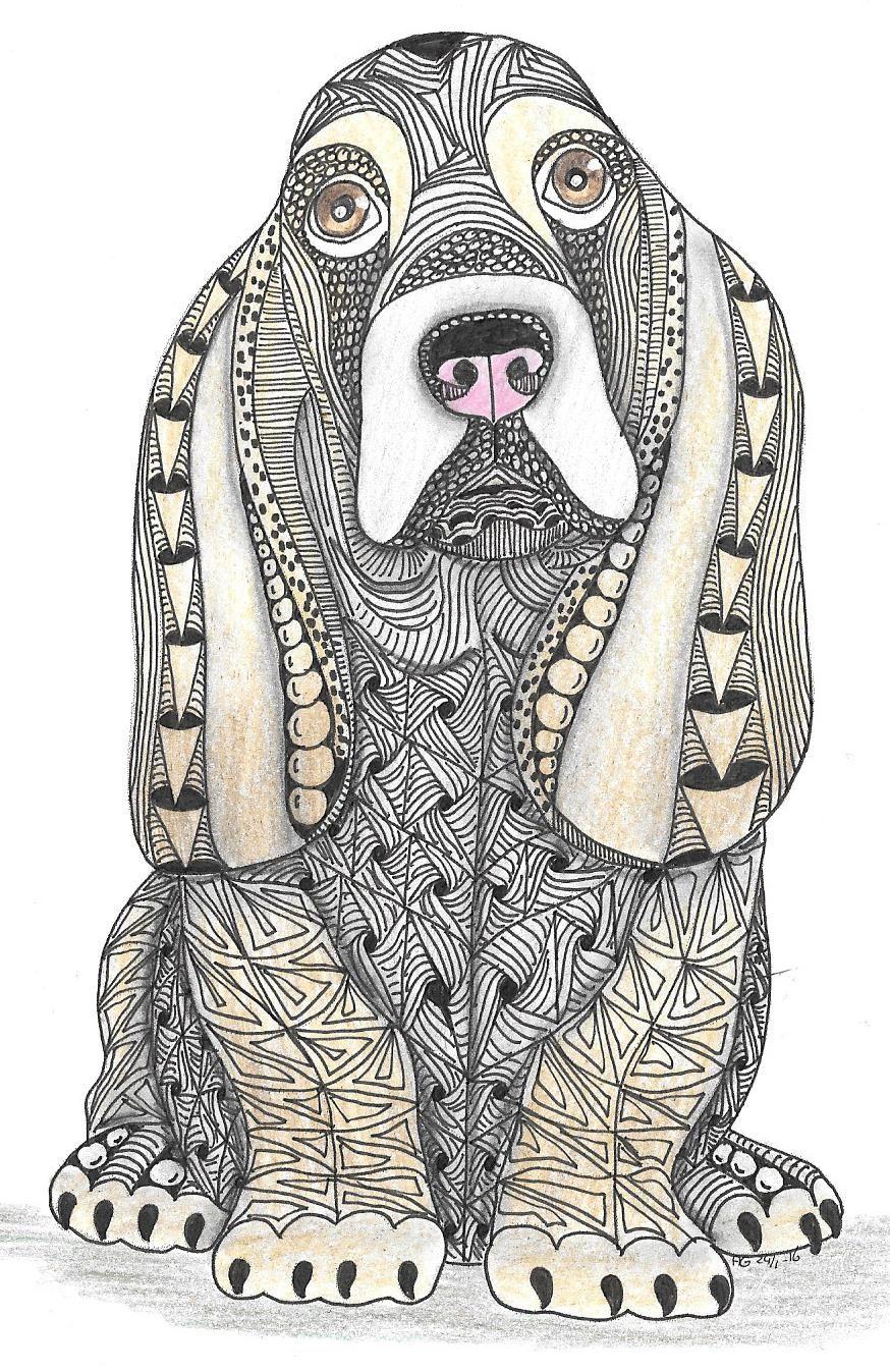Adri Basset Hound I Dibujos De Perros Pintura Perro Y