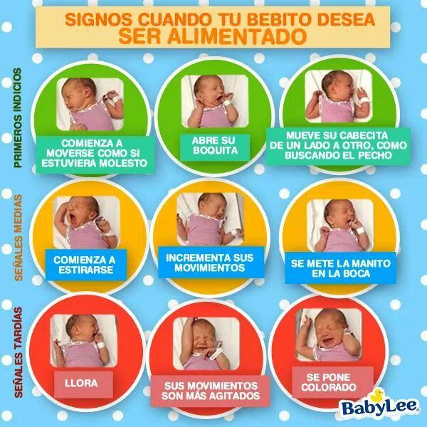 Signos Que Indican Que Tu Bebe Tiene Hambre Bebe Lactancia Niños