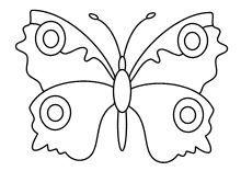 Malvorlage Schmetterlinge | Malvorlage schmetterling ...