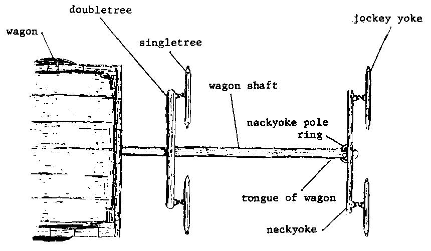 Pin On Wagon