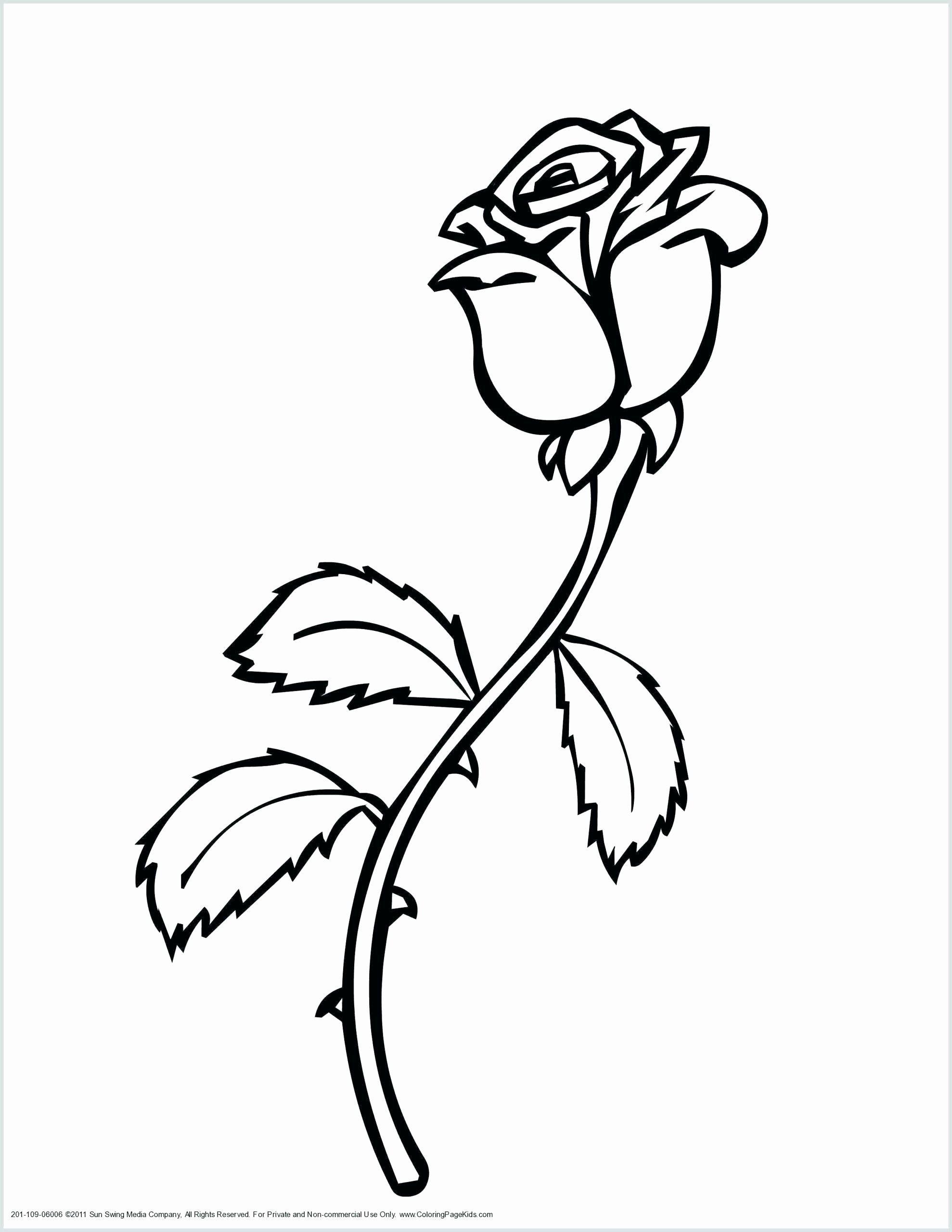 Malvorlagen Fruhlingsblumen Luxus Bedruckbare Fruhlingsblumen Allenfine Rose Coloring Pages Flower Coloring Sheets Flower Coloring Pages